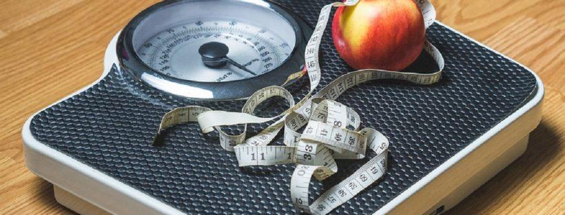 online gewichtsconsulent afvallen door gewoon te eten