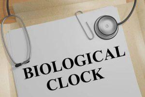 biologische klok om beter te slapen